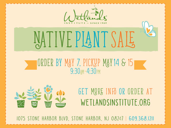 Wetlands-Native-Plant-Sale-Promo-Flyer